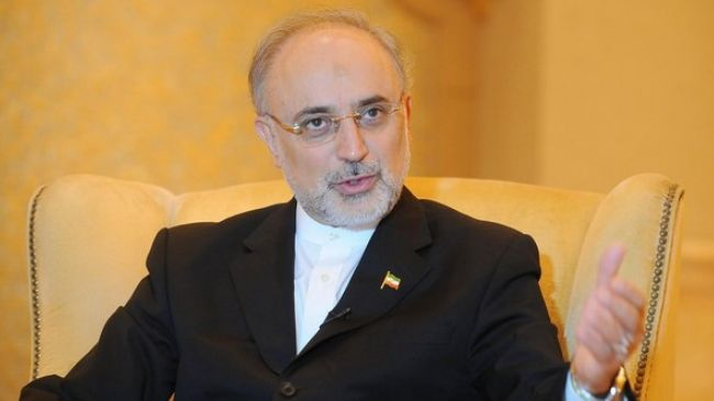 Director of the Atomic Energy Organization of Iran Ali Akbar Salehi