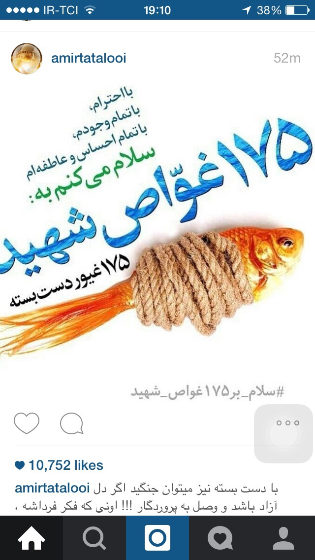 A collection of posters in memorial of 175  Iranian martyr divers (12)