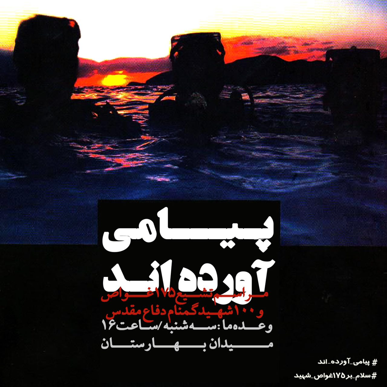 A collection of posters in memorial of 175  Iranian martyr divers (13)