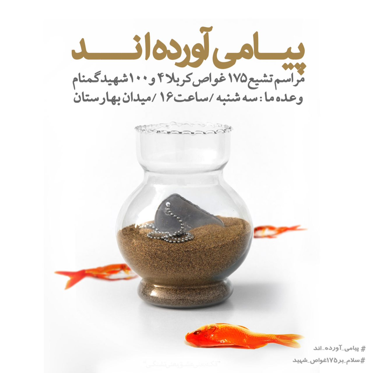 A collection of posters in memorial of 175  Iranian martyr divers (14)