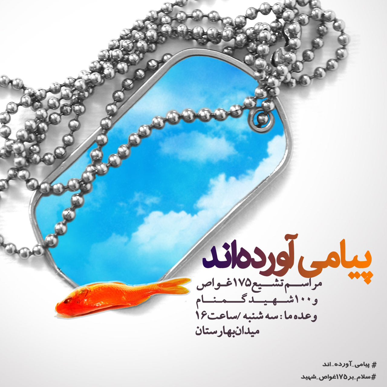A collection of posters in memorial of 175  Iranian martyr divers (17)