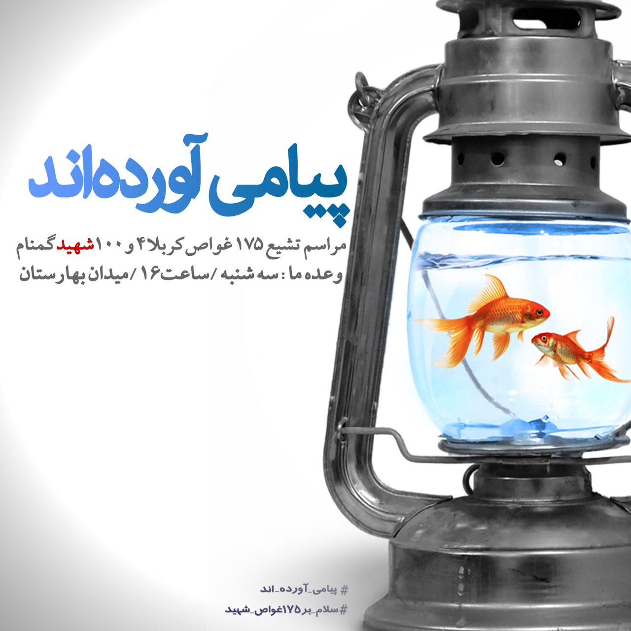 A collection of posters in memorial of 175  Iranian martyr divers (23)