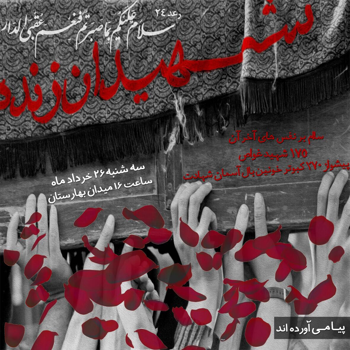 A collection of posters in memorial of 175  Iranian martyr divers (31)