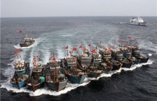 Chinese Fishing Boats in Bandar Abbas port