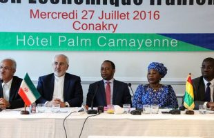 Iran-Guinea Conakry Joint Economic Summit (1)