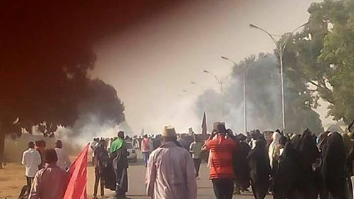 nigerian-forces-attack-shia-rally-ahead-of-arbaeen