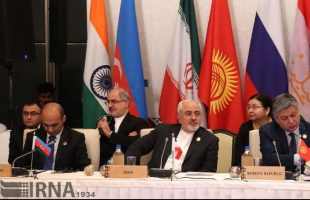zarif-in-heart-of-asia-conference-on-afghanistan